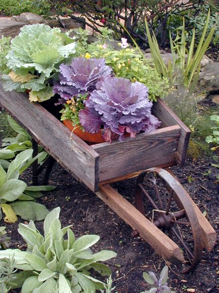 love old things like this little wheelbarrow to plant pretty plants ...