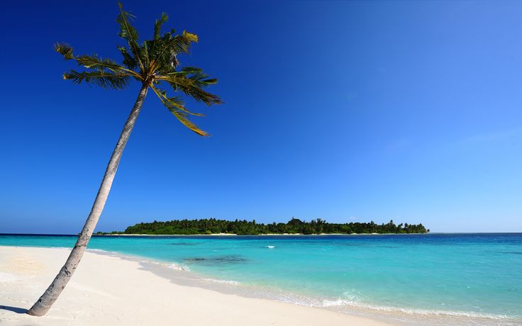 Free powerpoint backgrounds beach