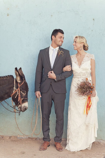 never realized I needed a donkey at my wedding before.