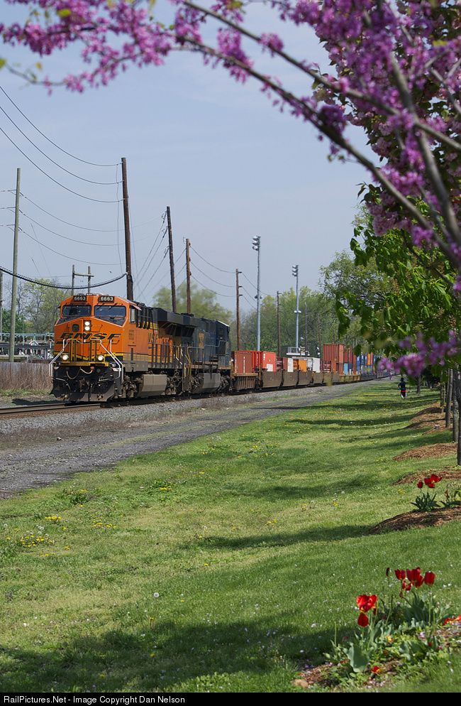 RailPictures.Net Photo: BNSF 6663 BNSF Railway GE ES44C4 at Dumont, New Jersey by Dan Nelson | Railroad images | Pinterest | Bnsf railway, Train and Train trav…