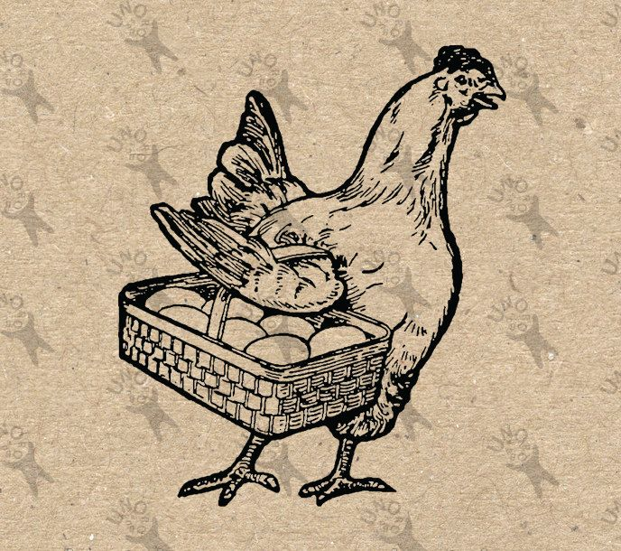 Image Hen Fresh Eggs Instant Download picture Digital printable vintage clipart graphic Stamp Totes Towels Transfer Iron On Pillows HQ300dpi by UnoPrint on Etsy