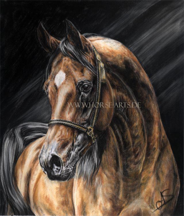 Brown Arabian Stallion by Oceansoul84 on DeviantArt