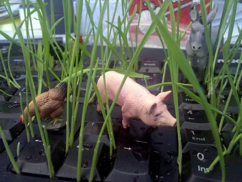 やりすぎでしょ!「同僚が休暇中なのでPCキーボードを細工してみた」:らばQ