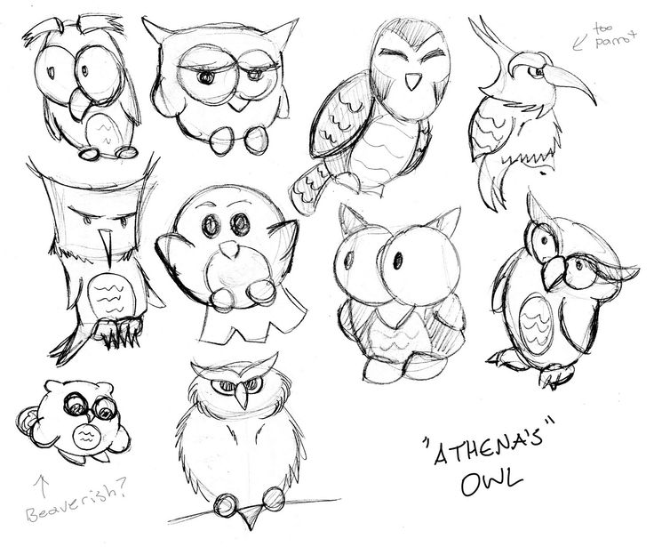 The 25 best simple owl drawing ideas on pinterest owl for Cartoon owl sketch