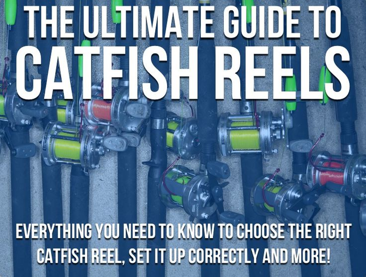 Everything you ever needed to know about catfish reels and more!