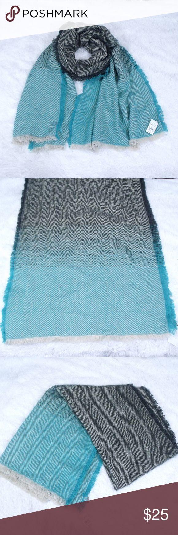 Ann Taylor Loft Blanket Scarf Ann Taylor Loft Blanket