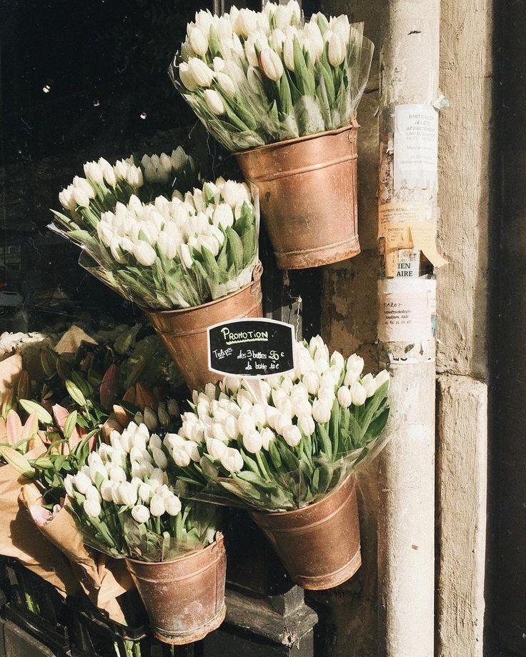 Flower market - white roses #flowers