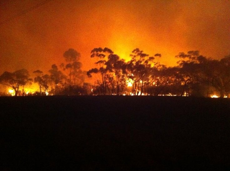 Sth fires 2013
