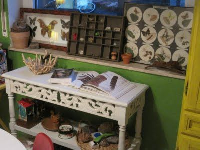 our nature table, nature display of butterflies, rocks, bird feathers, and nature study books.