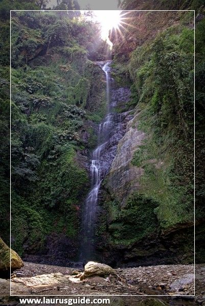 The beautiful Chadwick Falls of Shimla is one of the main attractions of the state of Himachal Pradesh. Located at a distance of about 7 km and 45 minutes walk from Summer Hill Chowk Shimla, the site attracts most tourists who visit Shimla every year. Nestled in the dense forests, beautiful waterfalls flow Chadwick from a breath taking height of 1586 meters.