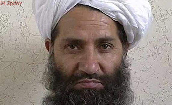'Každý mudžáhid by měl zasadit strom'. Taliban vyzval k ochraně přírody