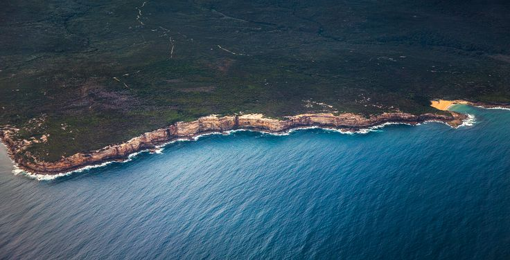Australia's Royal National Park by Flynn Armstrong Photography [1080  553]   landscape Nature Photos
