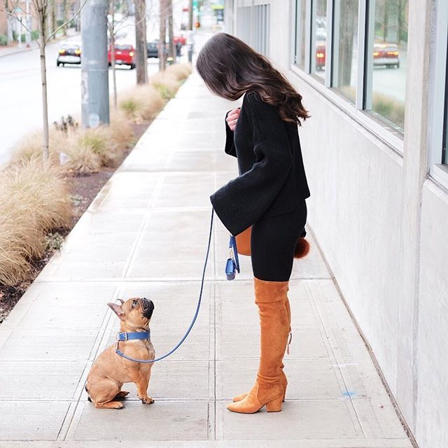 All black outfit with whiskey brown boots and bag.  Block heel over the knee boots, bell sleeve sweater with choker collar, french bulldog puppy.