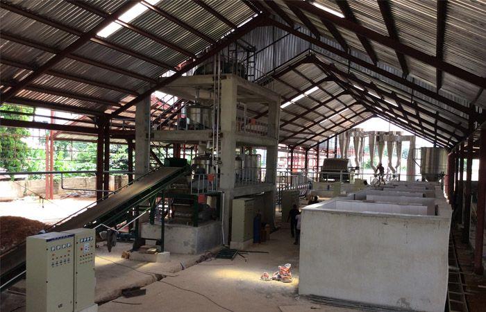 Pin by Cassava machine on cassava starch production line | Plant