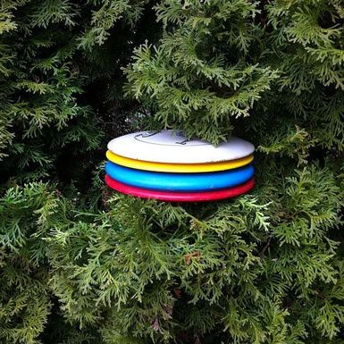Best Disc Golf Courses and Resources - Portland Area: Disc Golf