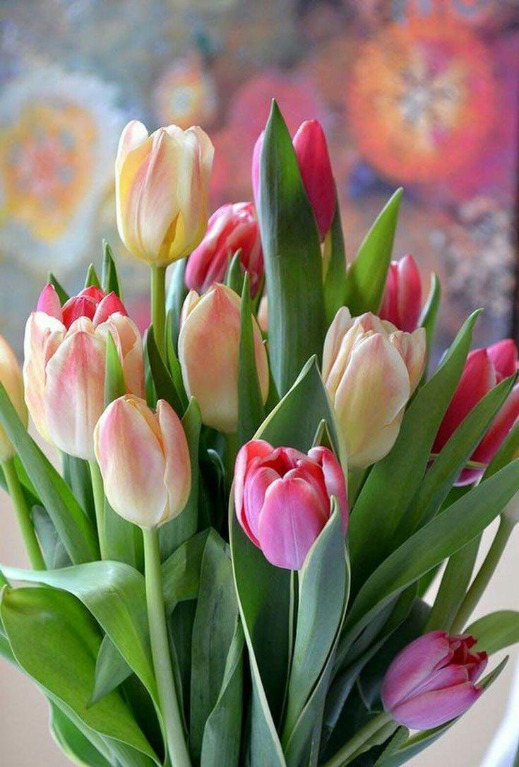 открытка весенние цветы фото организация