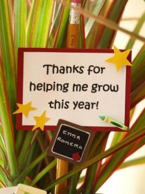 Leuk bedankje voor de juf: bedankt dat je met hebt laten groeien dit jaar.
