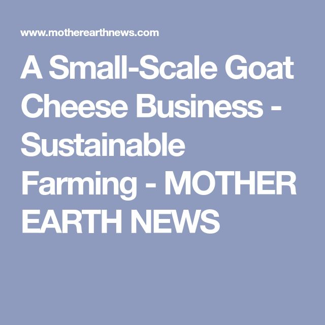 A Small-Scale Goat Cheese Business - Sustainable Farming - MOTHER EARTH NEWS