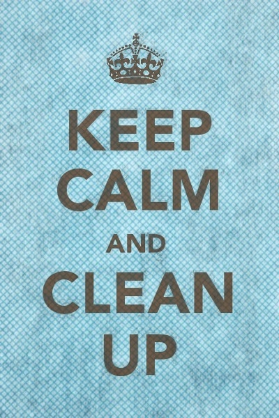 41 Best Images About Keep Calm Clean House On Pinterest