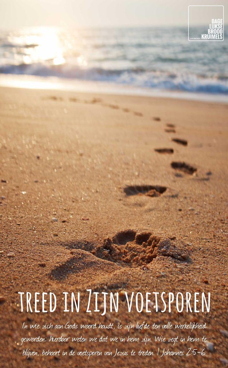 In wie zich aan Gods woord houdt, is zijn liefde ten volle werkelijkheid geworden; hierdoor weten we dat we in hem zijn. Wie zegt in hem te blijven, behoort in de voetsporen van Jezus te treden. 1 Johannes 2:5-6  #God, #HetWoord, #Jezus  http://www.dagelijksebroodkruimels.nl/1-johannes-25-6/