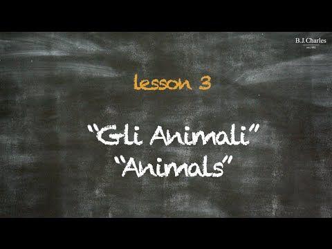 Giochiamo in inglese insieme a Miss Charles e ad un suo amico. Nell'episodio 3 impariamo i nomi degli animali. http://www.bjcharles.it/