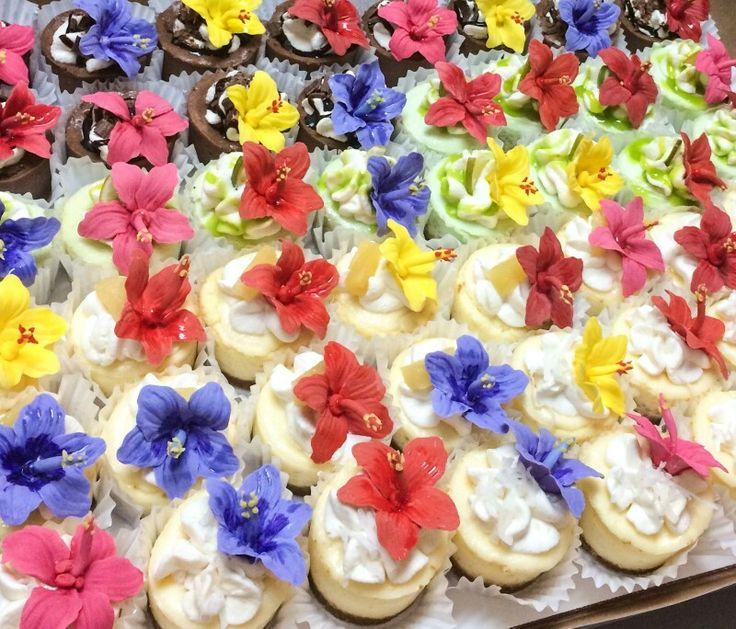 Edible Mini Hibiscus Sugar Flowers by me! Delicious mini cheesecakes by my cuz at Cheesecake Dreamations! Beautiful and delicious!