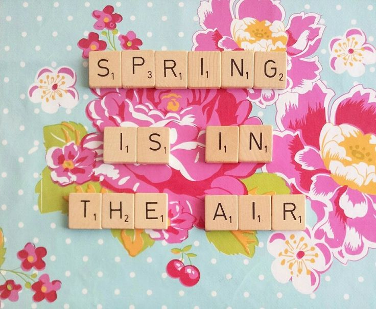 1000 images about spring is in the air on pinterest