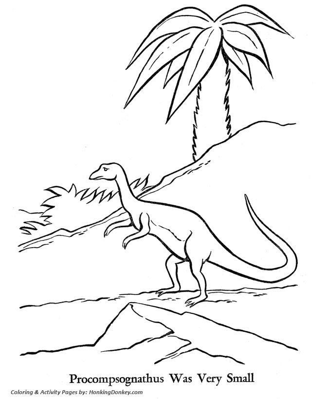 18 best Coloring Dinosaurs images on Pinterest Dinosaur coloring - new coloring page fig tree