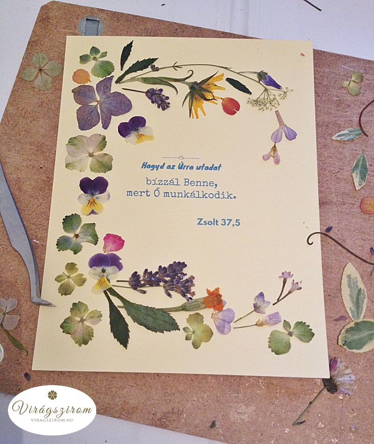 pressed flower picture draft (with Bible verse)