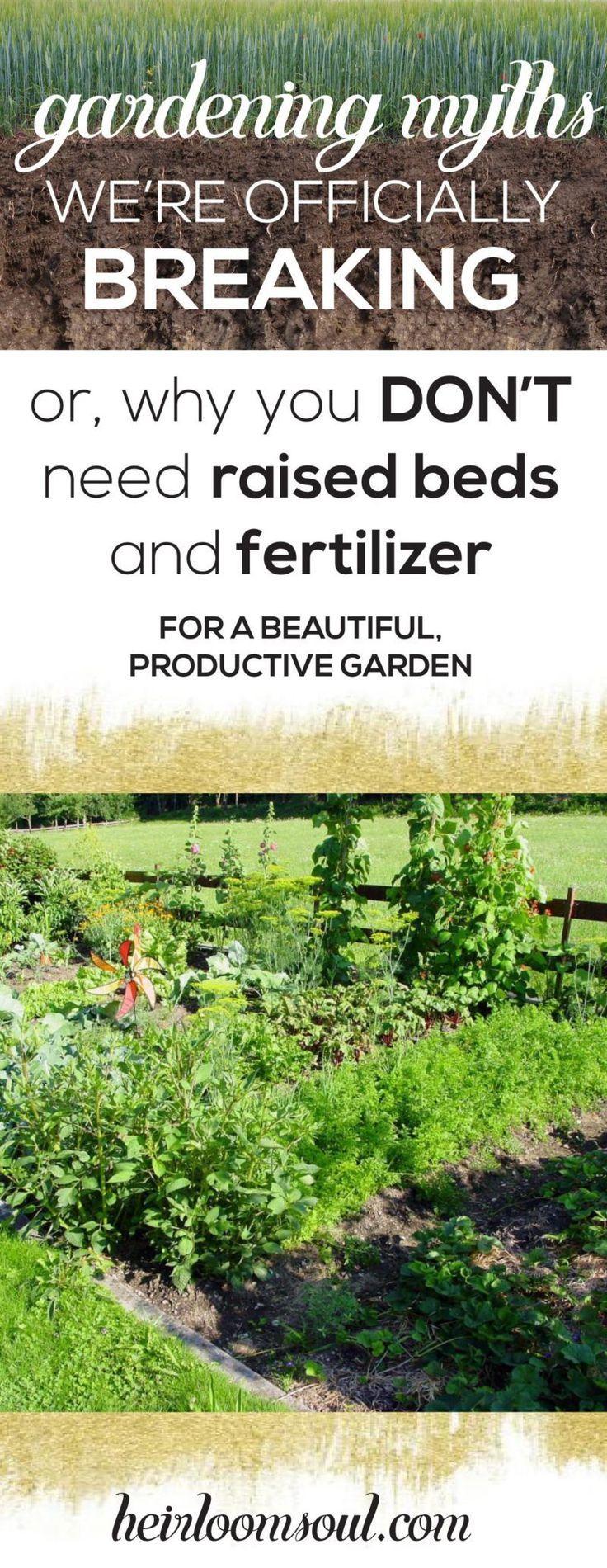 390 best homesteading u0026 gardening images on pinterest gardening