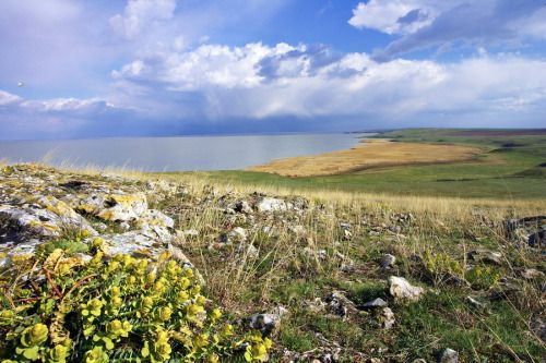 The Dobrogea region in Romania. How wonderful!