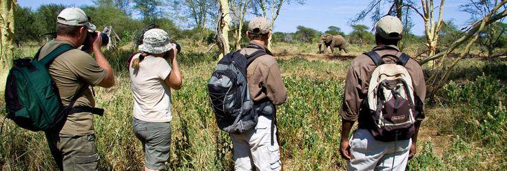 Private Safaris - Walking