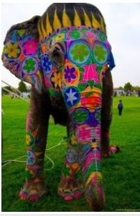 Colorful elephant...Never be afraid to be your own unique colorful self. Those that love you will support your individuality no matter what♥