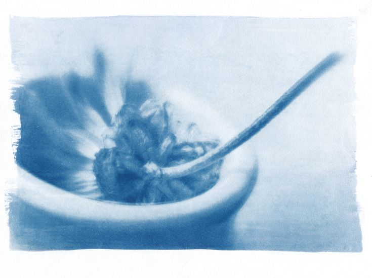 Каллиграфу, cyanotype