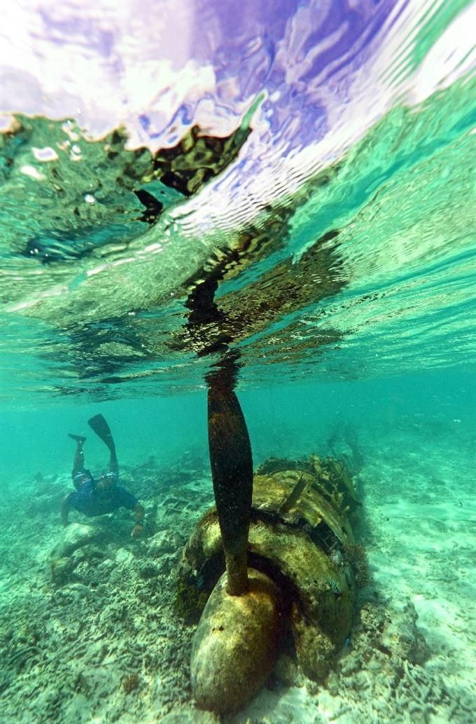 海底に眠るゼロ戦をダイビングで見に行く。パラオ旅行の観光スポットまとめ。