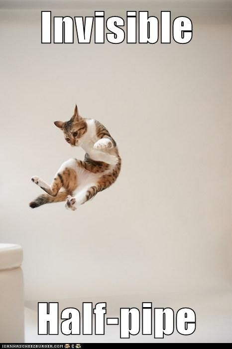 Invisible  Half-pipe. This would be my cat