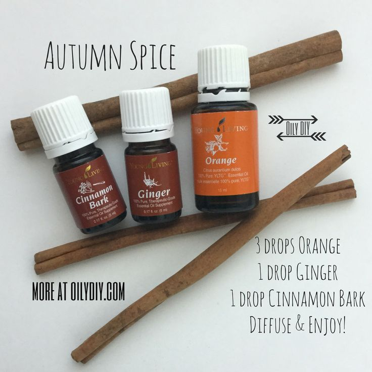 Autumn Spice www.oilydiy.com #oilydiy #diy #youngliving #essentialoils #yleo #diffuser #fall #autumn #cinnamon #cinnamonbark #ginger #orange