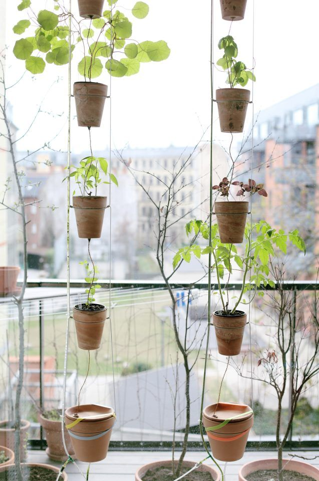 Danish windowfarm