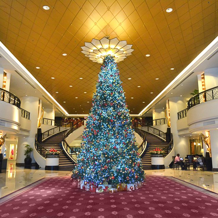 Have you visited us lately? Here comes our Christmas Tree. Don't forget to #plazaatheneebangkok for a chance to win our Christmas hamper.