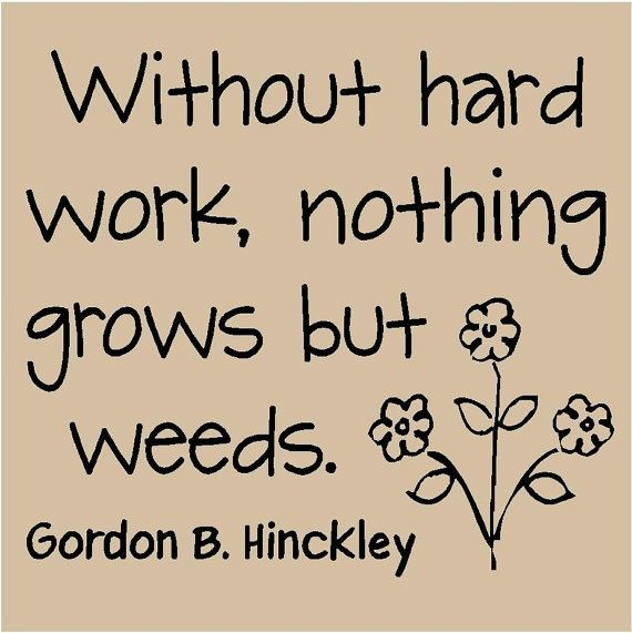 Garden Love Quotes Inspiration The Garden Quotes Archive  Muslimgrower