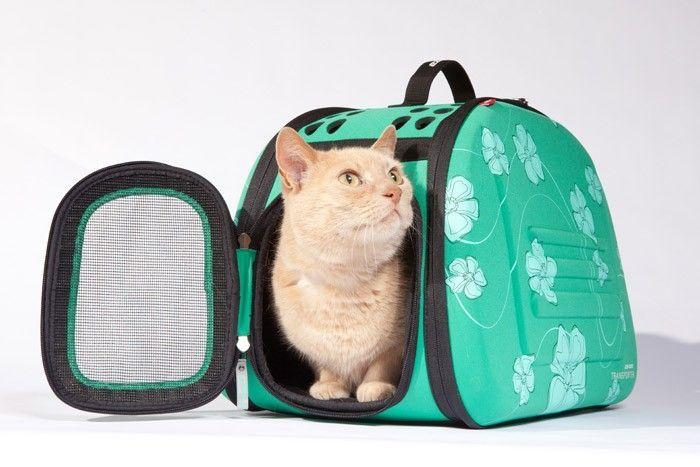 Met de EzyDog transport box kunt u uw hond of kat mee op reis nemen. De transport box is gemakkelijk te monteren en zorgt voor een comfortabele reis. De compacte en eenvoudige constructie maakt het mogelijk de transport box in te vouwen, voor een makkelijke opslag. Andere bijzondere eigenschappen zijn de ergonomische handvat alsmede de afneembare schouderriem.