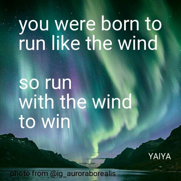 You were born to run like the wind so run with the wind to win - Lyrics from Pure Heart by YAIYA @empressyaiya Design by @carolasiekas Photo by @eventyr from @ig_auroraborealis #ymperia #lyrics #born #freedom #auroraborealis #northenlights #wind #win #winner #yaiya #yaiyaquote #pureheart #art #design #music #storyteller
