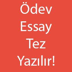 Üniversite öğrencileri için ödev tez makale essay rapor analiz - ödev tez hazırlama