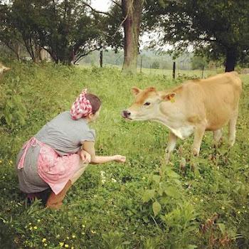 Cruze Dairy Farm #2013JuneDairyMonth #CelebrateDairy