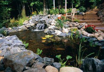 216 best pond ideas images on pinterest gardening ponds for Koi pond builders near me