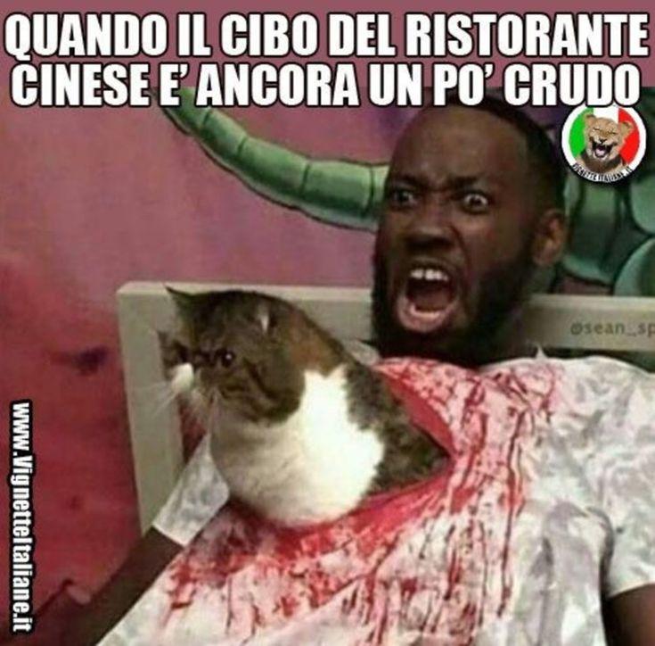 Immagini trash meme ita divertenti che fanno ridere scaricare gratis whatsapp 3706