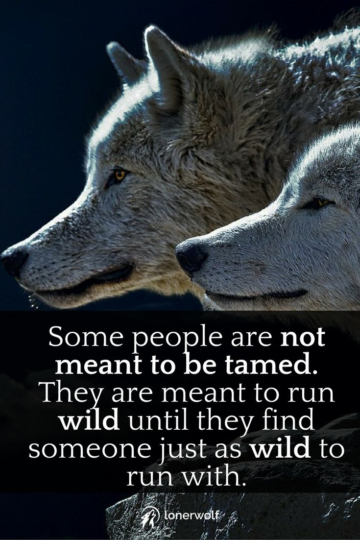 Run wild, be a free spirit, don't let them tame you.