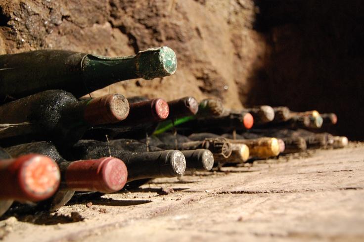 Winery Aglianico del Vulture. Basilicata. Italy...not far from where we are www.argonauti.com
