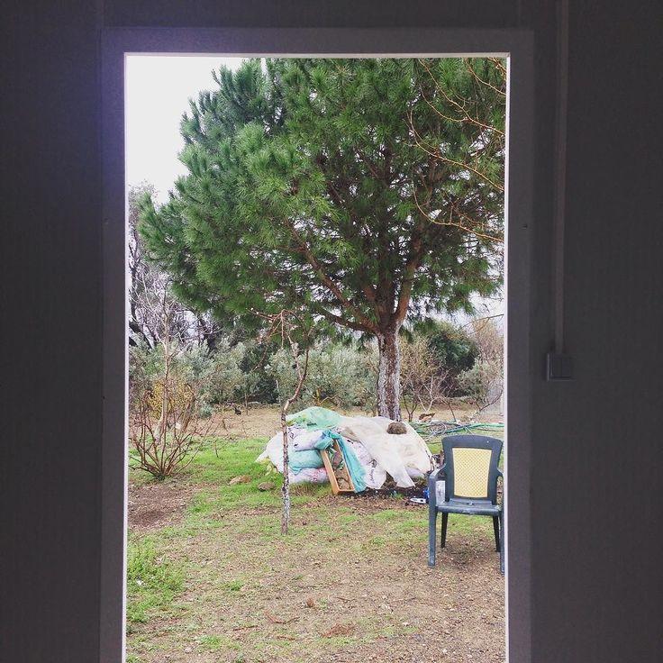 Bahçe kapımın manzarası nasıl olmuş da insanları apartmanda yaşamaya ikna etmişler? #köy #doğa #ay #dolunay #doğalyaşam #doğaylaiçiçe #doğalgayat #doğadayız #doğalortam #doğasever #doğayısev #doğayıseviyorum #doğada #doğadainsan #doğadostu #doğadostları #dağevi #tinyhouse #çiftlik #çiftlikevi #organikhayat #organikyaşam #organikyaşamalanı by kalabaliktanuzakta