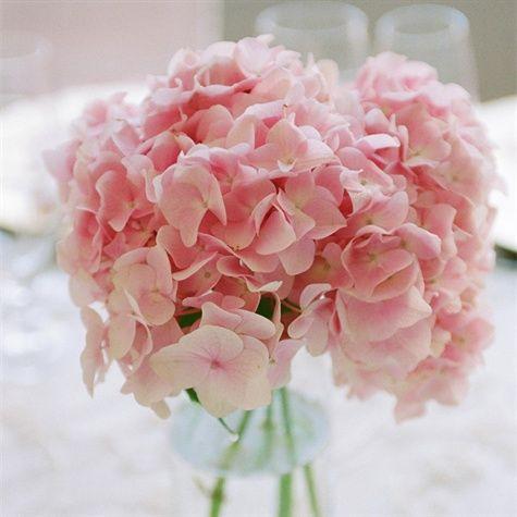 Light Pink Hydrangea Centerpiece